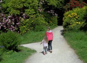 Gardens in Somerset