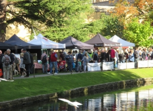 2020 Festivals in Somerset